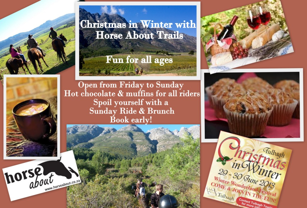 Christmas In Winter Activities Tulbagh