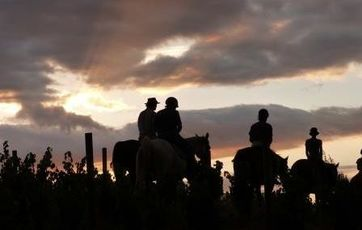 Sunset Horse Trails Ceres Tulbagh Wolseley