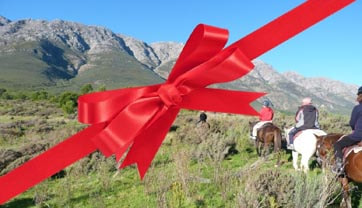 Gift voucher horse riding near cape towne