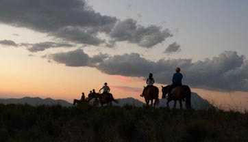 Sunset Horse Trails Cape Winelands